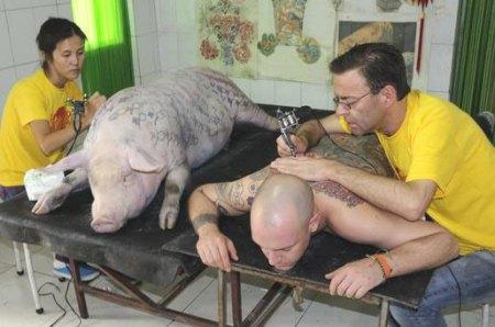 fake pet tattoo