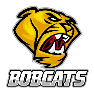 Bobcats sports team temporary tattoos
